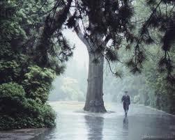 Tháng tám trời mưa !