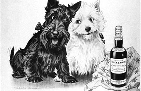 Bùi Ngọc Tấn và rượu Black and White