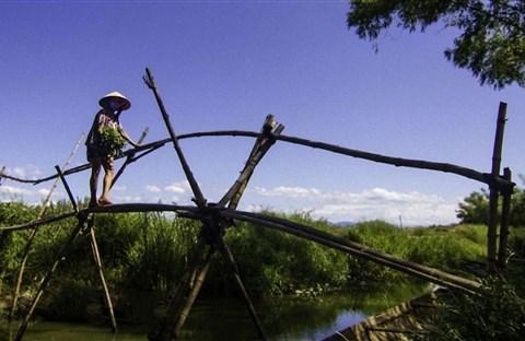 Miền Nam quê hương tôi : Kỷ niệm thời thơ ấu