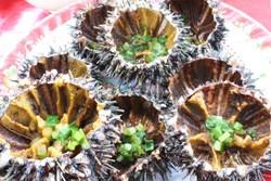 Ghiền nhum Phú Quốc