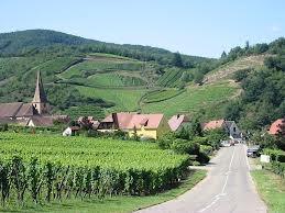 Alsace xứ sở vang trắng