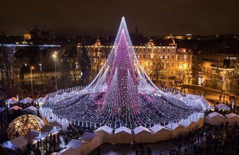 21 cây thông Noel khổng lồ nhất trên thế giới