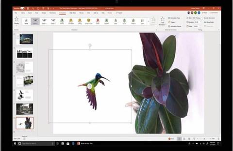 Microsoft bổ sung tính năng mới cho PowerPoint và Word trong tháng 11