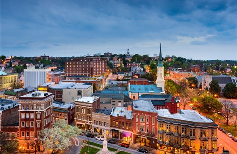 Thủ đô hoa anh đào của thế giới : thành phố Macon ở bang Georgia (Mỹ)