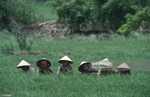 Hình ảnh về phụ nữ Việt Nam thập niên 1990