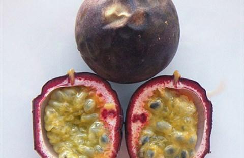 Lợi và hại của chanh dây (passion fruit)