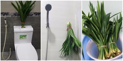 Mẹo khử mùi hôi hiệu quả trong WC - 1