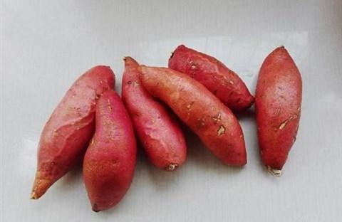 Nướng khoai bằng nồi cơm điện