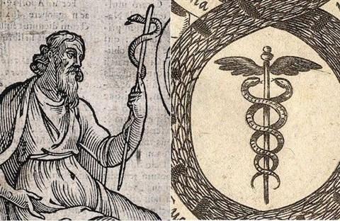 Vì sao biểu tượng của ngành Y lại là con rắn?