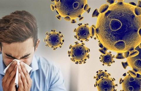 Bệnh dịch virus Corona Vũ Hán hoạt động ra sao?