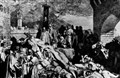 Những đại dịch trong lịch sử thế giới. Cấp độ COVID-19 tương đương đại dịch