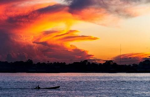 Vì sao sông Amazon, con sông dài nhất thế giới, không có một cây cầu?