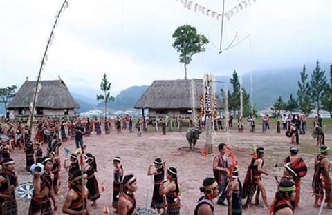 Nét văn hóa độc đáo trong lễ hội ăn trâu của một số dân tộc Tây Nguyên