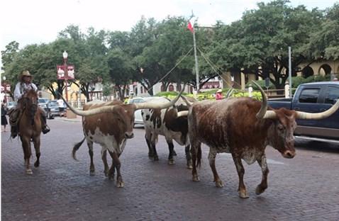 Texas 2013