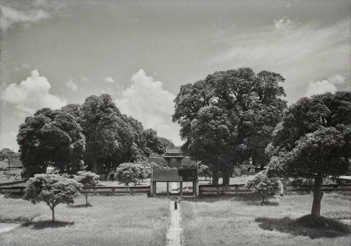 Đại học đầu tiên của VN thập niên 1920 - 3
