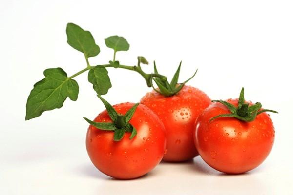 Cà chua và sức khỏe con người - 14