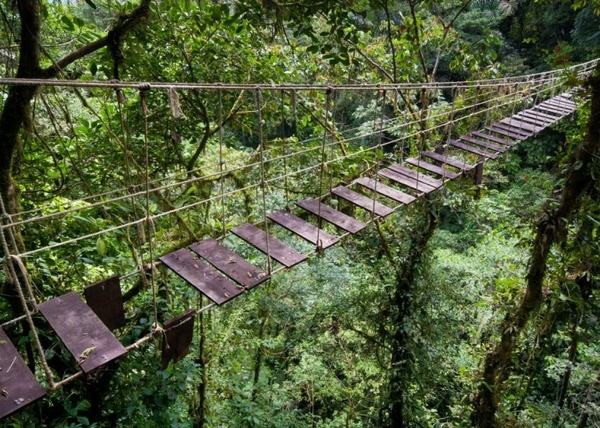 10 cây cầu treo sợ nhất thế giới - 1
