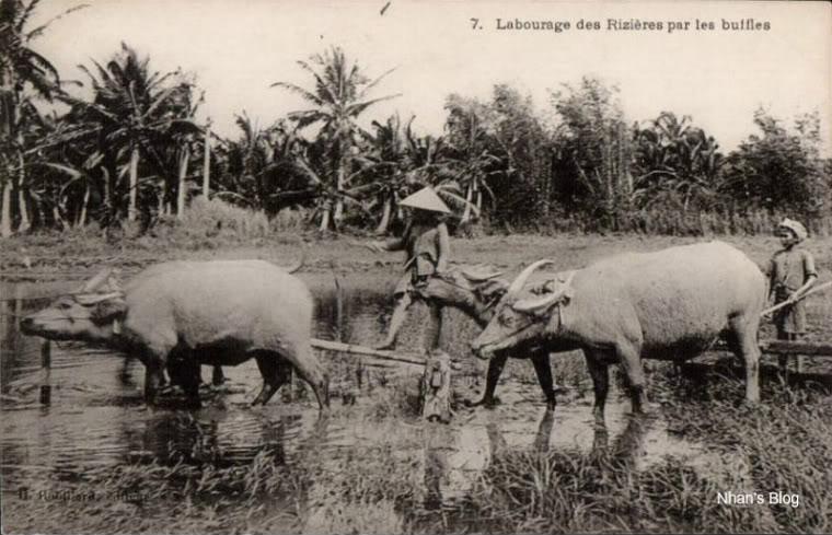 Đời sống nhà nông thời xưa - 34