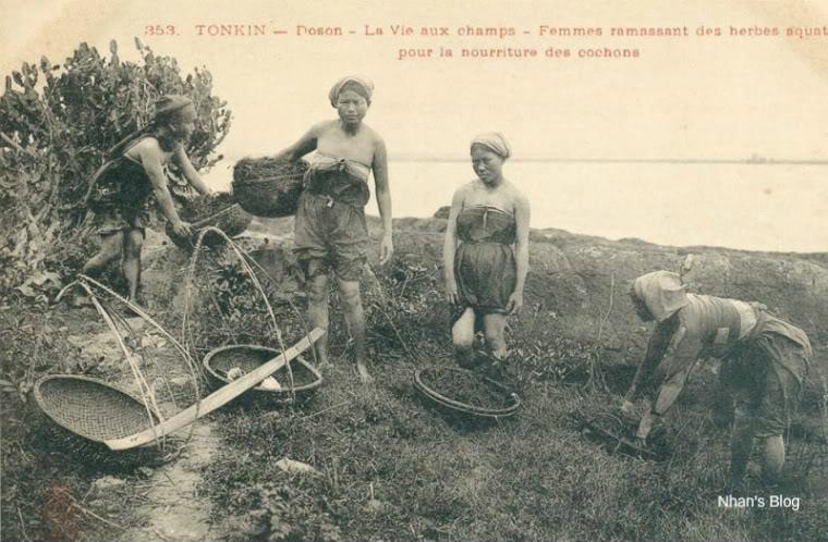 Đời sống nhà nông thời xưa - 23