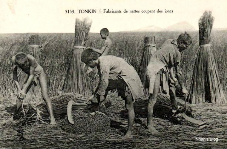 Đời sống nhà nông thời xưa - 39