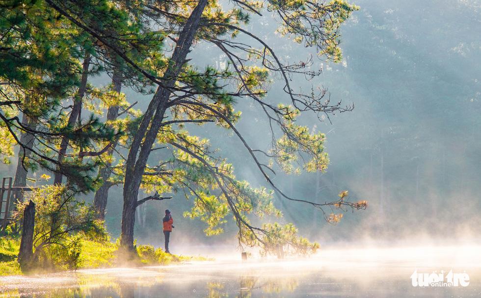 Đà Lạt mơ màng trong 'mùa nắng lạnh' đẹp nhất năm - 1