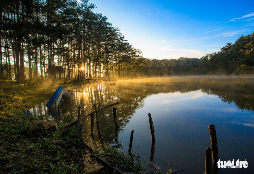 Đà Lạt mơ màng trong 'mùa nắng lạnh' đẹp nhất năm - 8