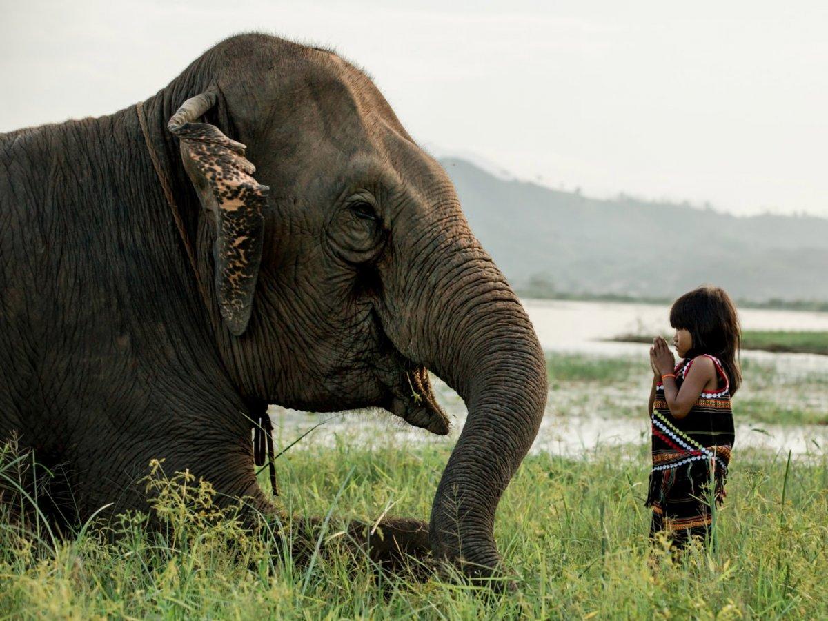 Chân dung các dân tộc Việt Nam qua lăng kính nhiếp ảnh gia người Pháp - 27