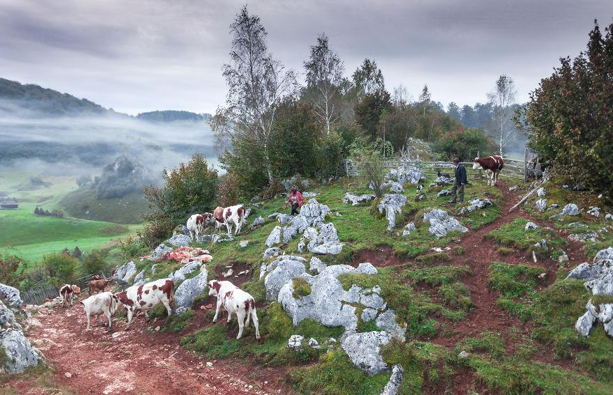 Vẻ đẹp kỳ diệu trên mảnh đất Transylvania huyền thoại - 12