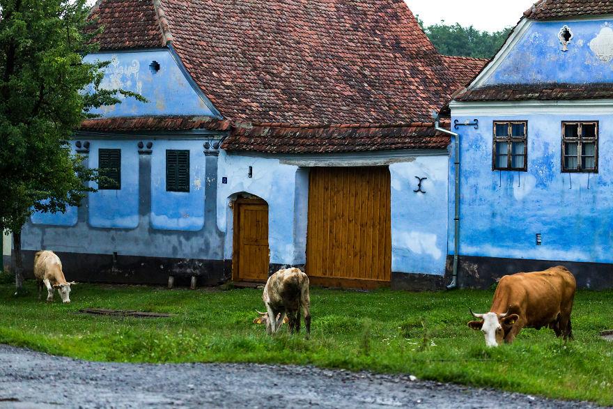 Vẻ đẹp kỳ diệu trên mảnh đất Transylvania huyền thoại - 15