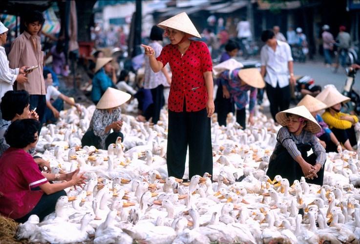 Hình ảnh về phụ nữ Việt Nam thập niên 1990 - 5