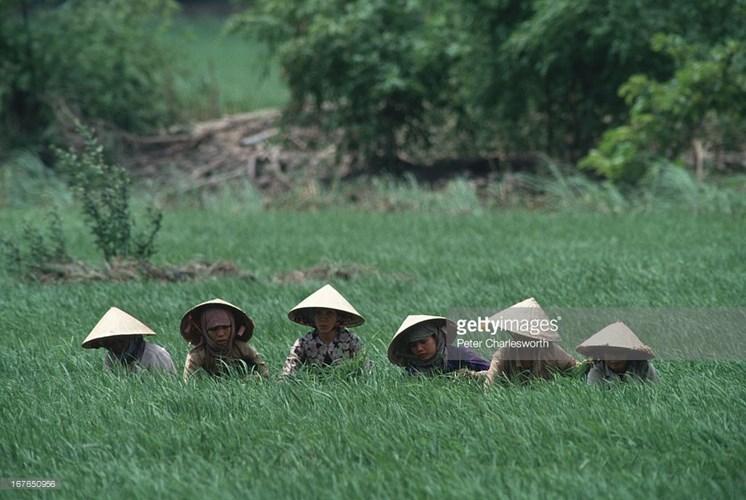 Hình ảnh về phụ nữ Việt Nam thập niên 1990 - 9