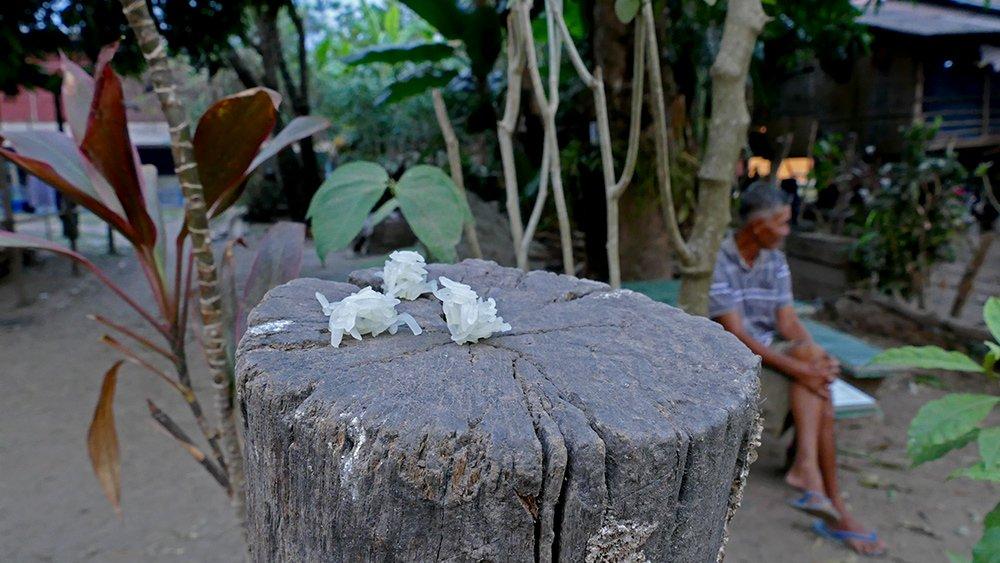 Hình ảnh đẹp mỗi sáng trên khắp đất nước Lào - 10