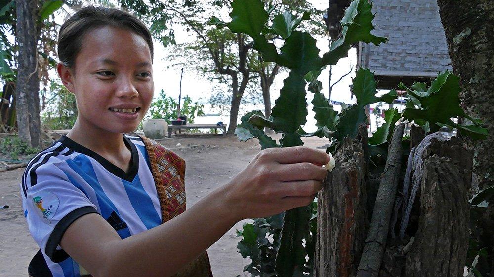 Hình ảnh đẹp mỗi sáng trên khắp đất nước Lào - 9