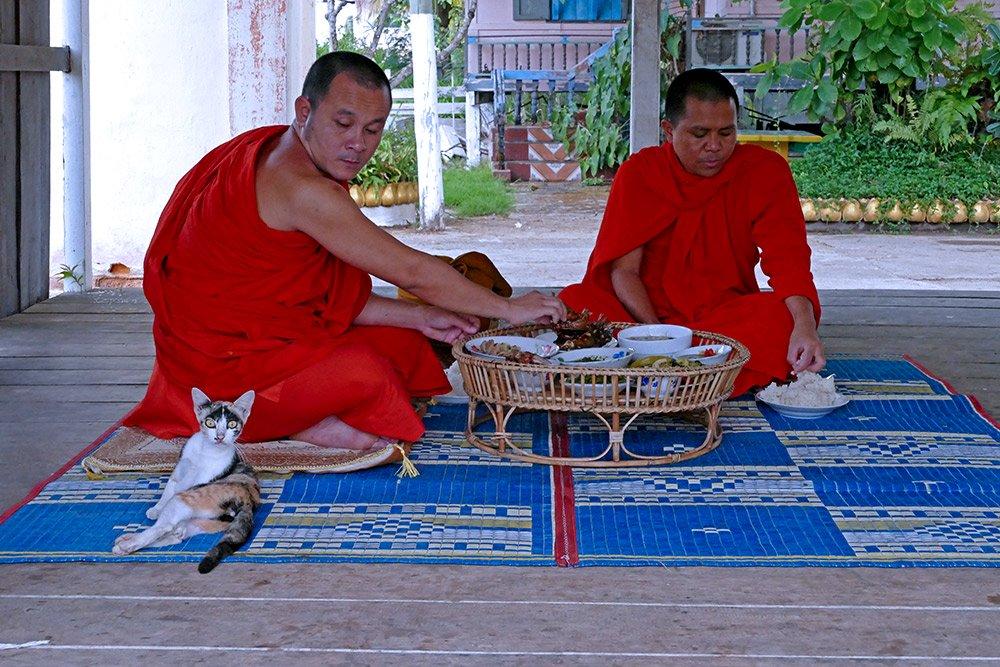 Hình ảnh đẹp mỗi sáng trên khắp đất nước Lào - 14