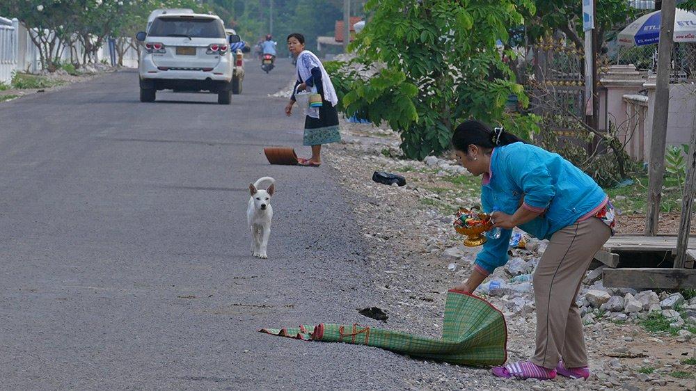 Hình ảnh đẹp mỗi sáng trên khắp đất nước Lào - 1