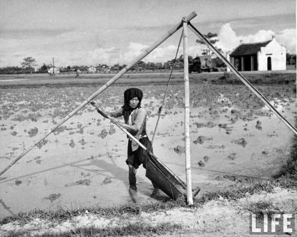 Những hình ảnh độc đáo do phóng viên tạp chí Life chụp ở Đông Dương năm 1948 - 35