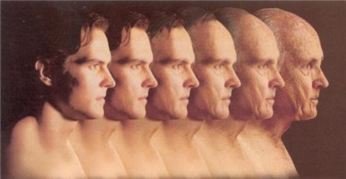 Khi nào các bộ phận trong cơ thể con người bắt đầu thoái hóa? - 3