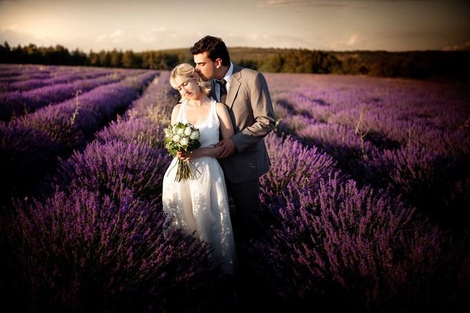 Thiên đường oải hương tràn sắc tím giữa lòng Provence - 9