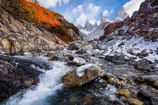 Chiêm ngưỡng Patagonia – Bức tranh tráng lệ đầy sắc màu ở nơi tận cùng thế giới - 11