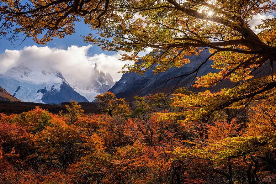 Chiêm ngưỡng Patagonia – Bức tranh tráng lệ đầy sắc màu ở nơi tận cùng thế giới - 4