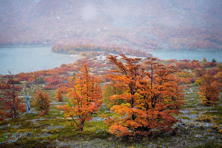 Chiêm ngưỡng Patagonia – Bức tranh tráng lệ đầy sắc màu ở nơi tận cùng thế giới - 3