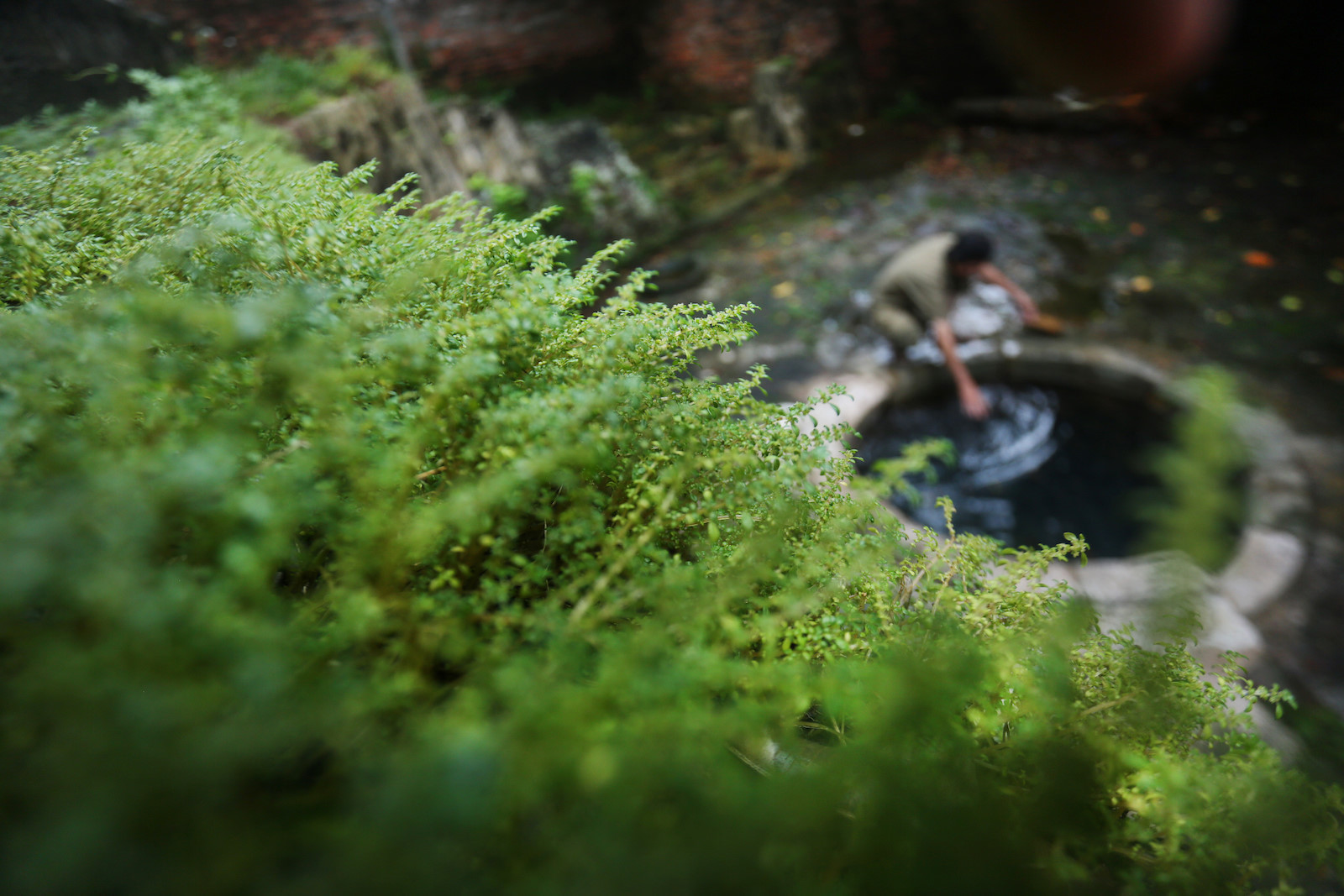 Những khoảnh khắc mùa thu Hà Nội lay động lòng người - 9