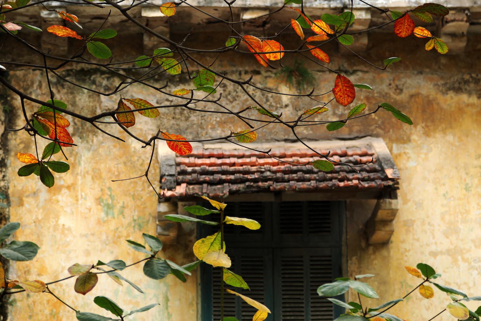 Những khoảnh khắc mùa thu Hà Nội lay động lòng người - 13