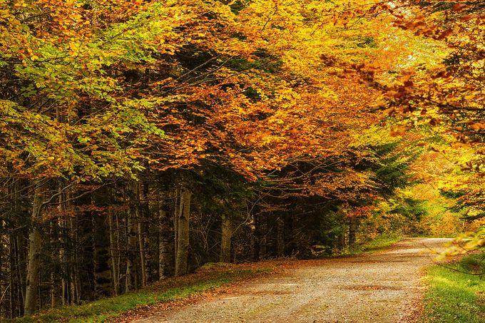 10 thành phố có mùa thu đẹp ở châu Âu - 8