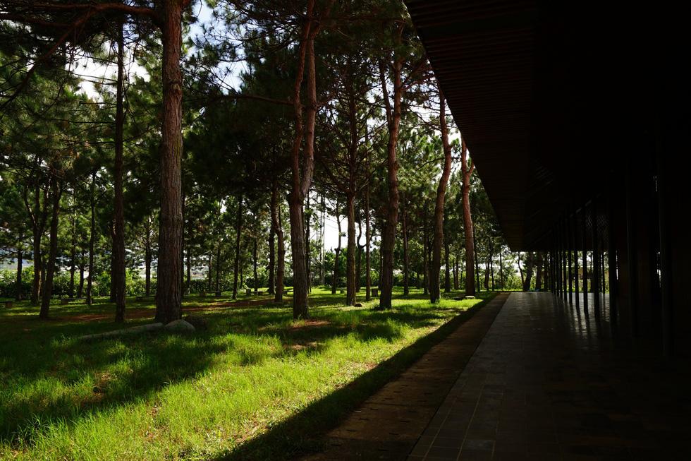 Nhà thờ Ka Đơn - linh hồn Churu giữa rừng Lâm Viên - 3