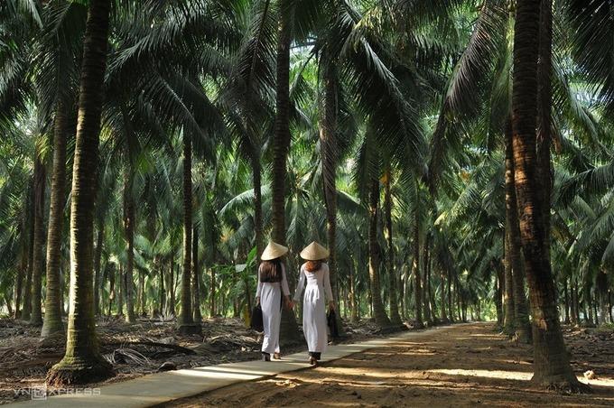 Vẻ đẹp xứ dừa Bến Tre - 3