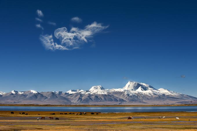 Tây Tạng phủ tuyết trắng trong mùa đông - 7