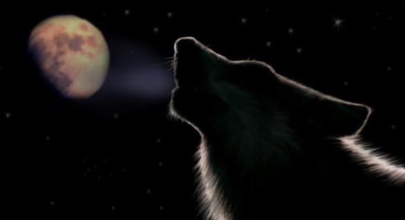 Trăng sói, trăng tuyết, trăng hồng… là trăng gì? - 1