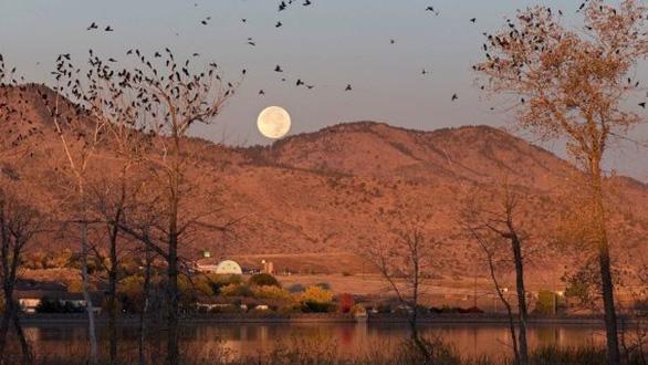 Trăng sói, trăng tuyết, trăng hồng… là trăng gì? - 10