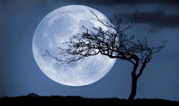 Trăng sói, trăng tuyết, trăng hồng… là trăng gì? - 12